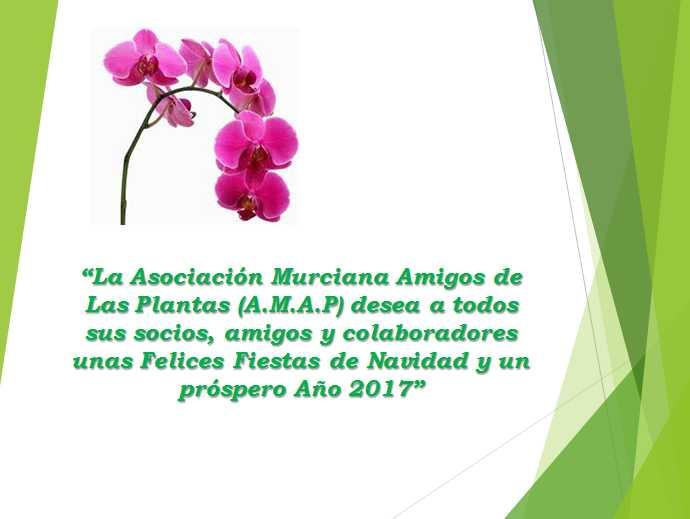 Asociación Murciana de Amigos de las Plantas