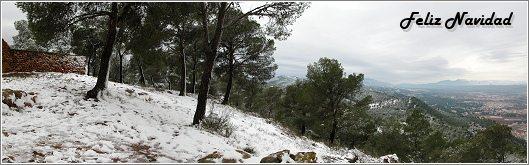 Un lugar nevado de la Cresta del Gallo, el pasado 19 de diciembre de 2009. Foto: Francisco Javier López Espinosa