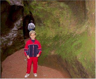 imagen del interior del Estrecho de la Arboleja, donde podemos apreciar cómo el briófito presentado en este artículo, tapiza por doquier las paredes del mismo