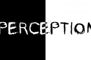 perception-1