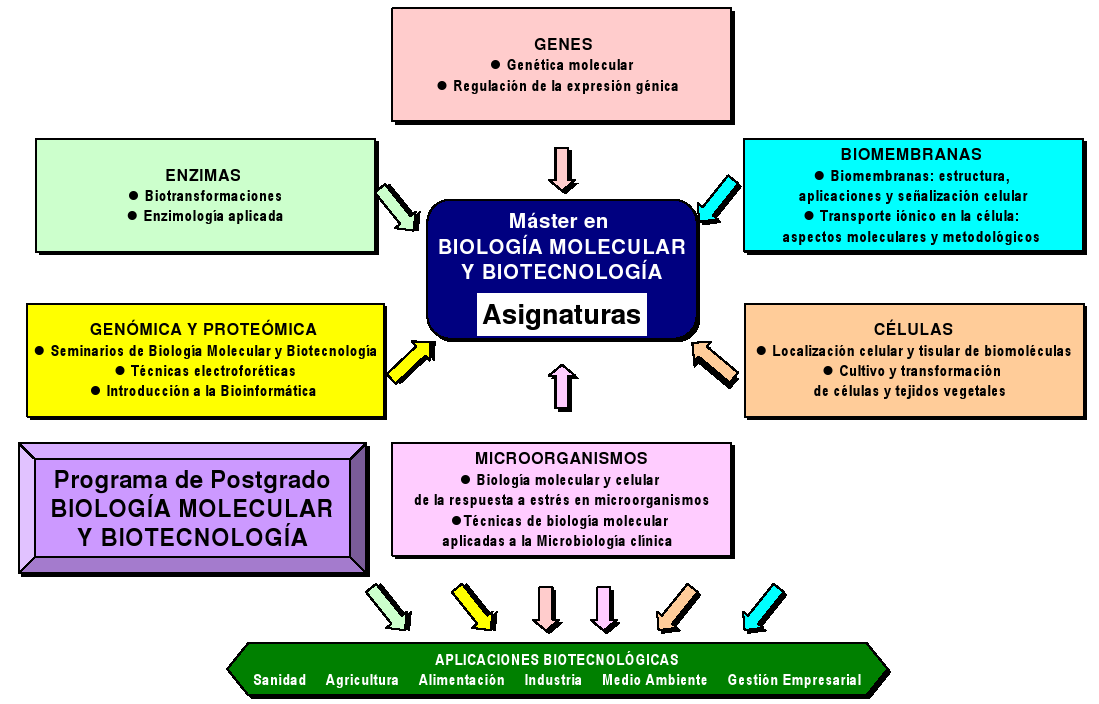 efectos secundarios ciclo winstrol primobolan