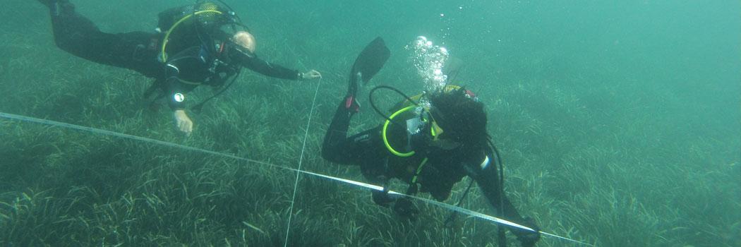 La prospezione e lo studio dell'archeologia subacquea nell'Isola Fenicia di Adentro