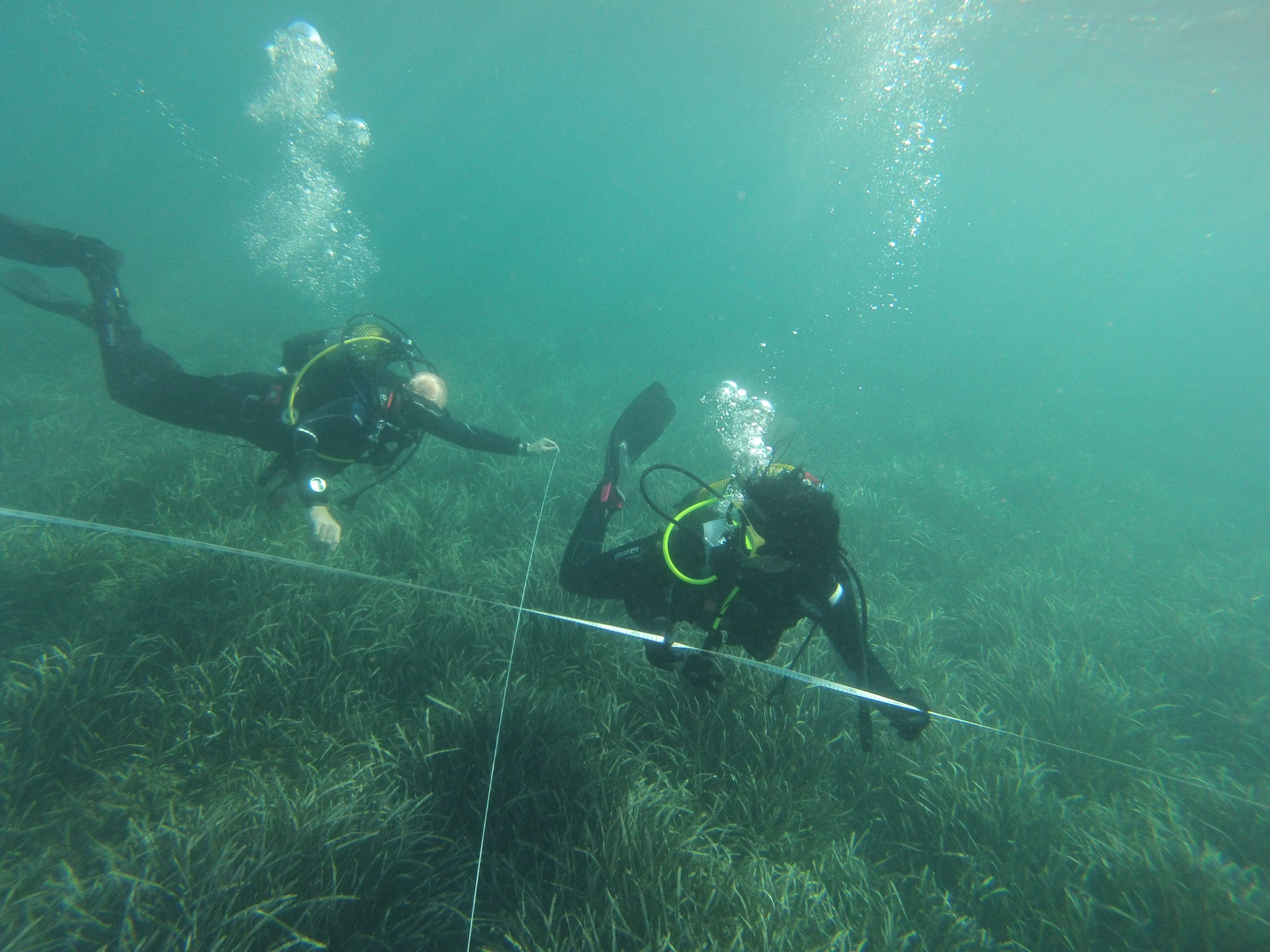 Study marine archaeology australia