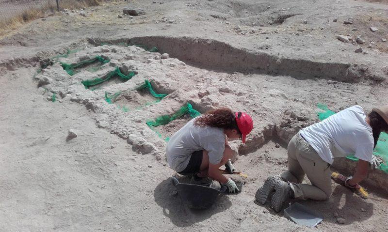 """Excavación arqueológica en la villa romana de """"LOS VILLARICOS"""". Campaña de 2016"""