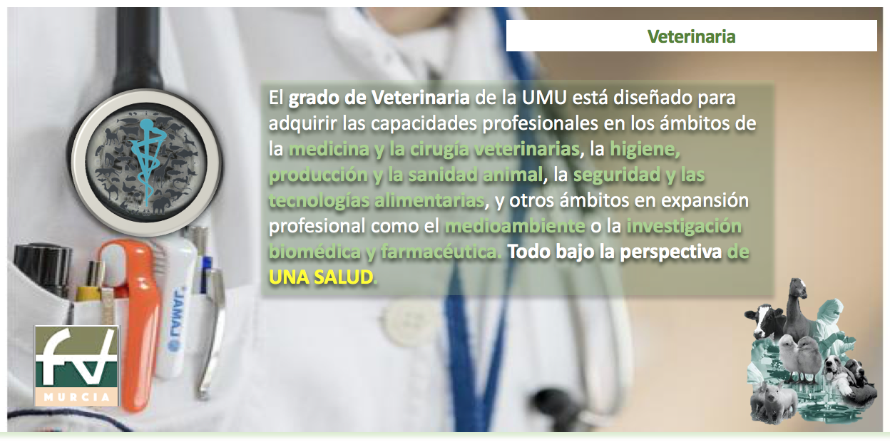 información general (grado en veterinaria) - universidad de murcia