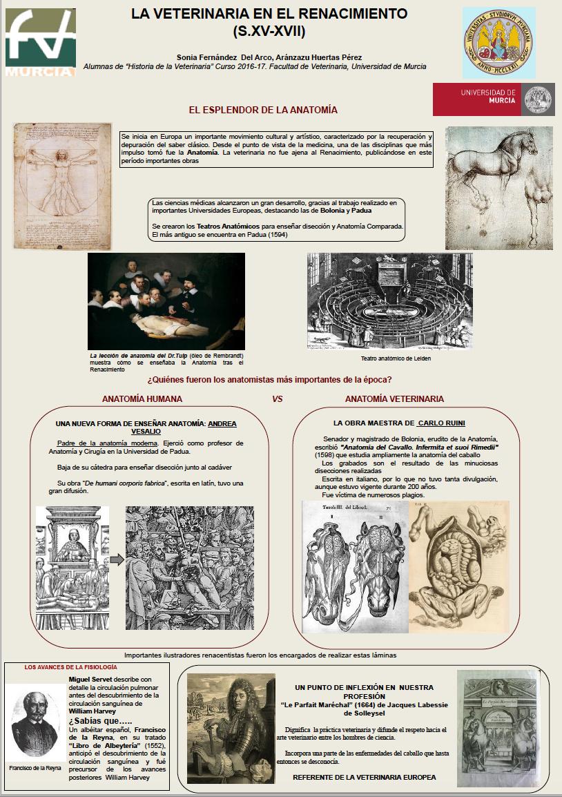 Excepcional Anatomía Del Cdb Ilustración - Imágenes de Anatomía ...