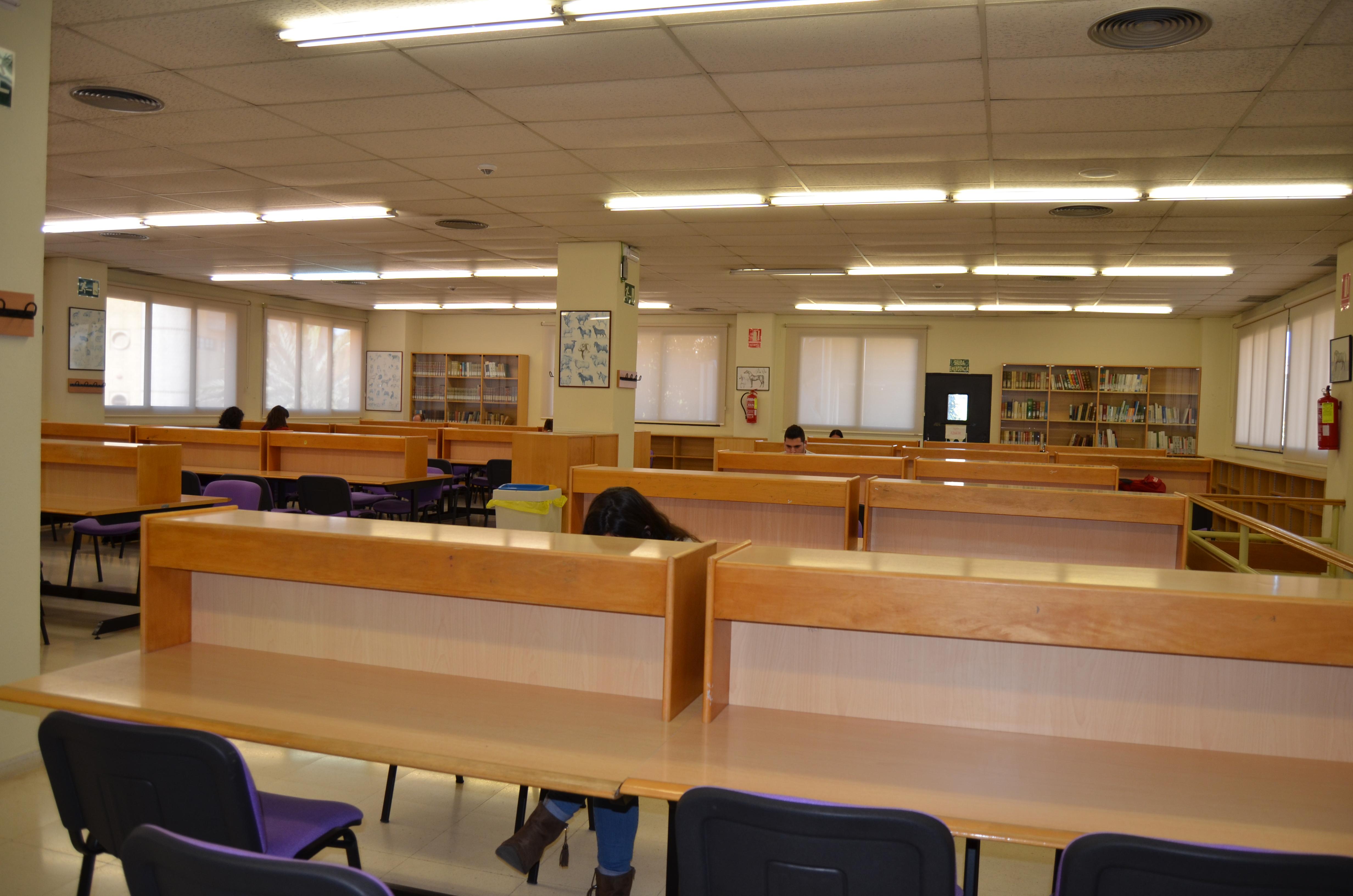 Biblioteca universidad de murcia for Estudiar interiorismo murcia