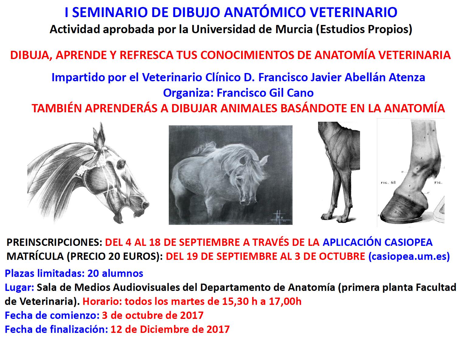 Contemporáneo Anatomía Veterinaria Friso - Imágenes de Anatomía ...