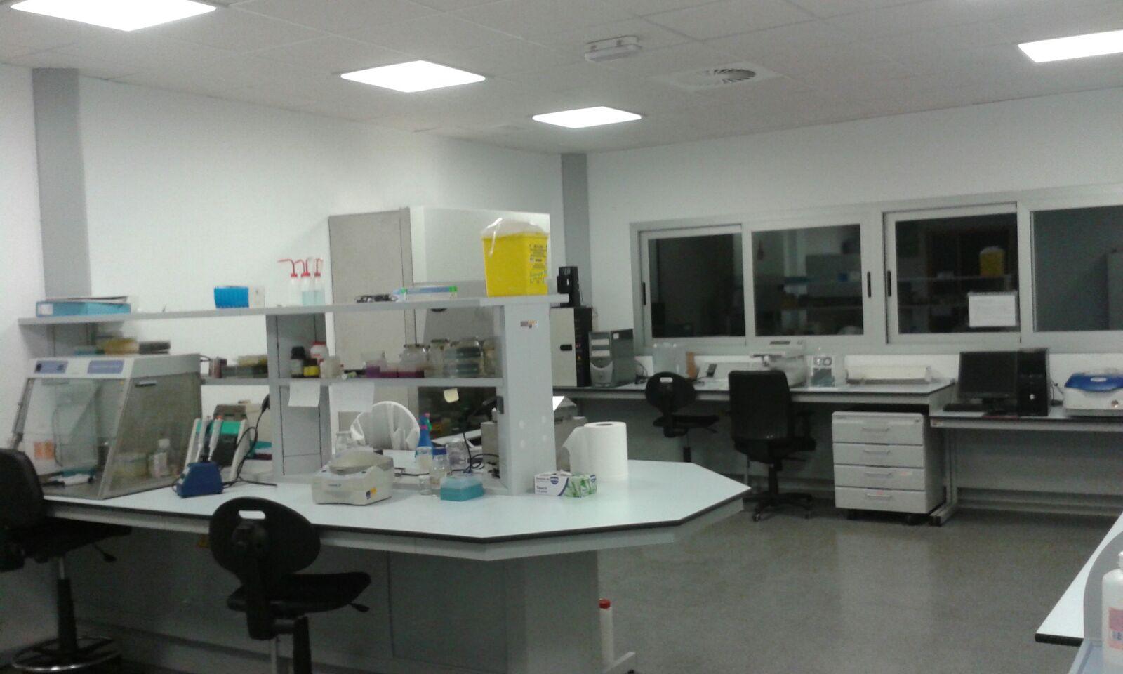 laboratorio vitalis 1