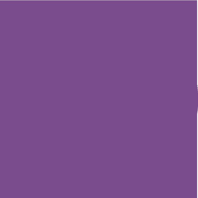 UM Destino Estrella
