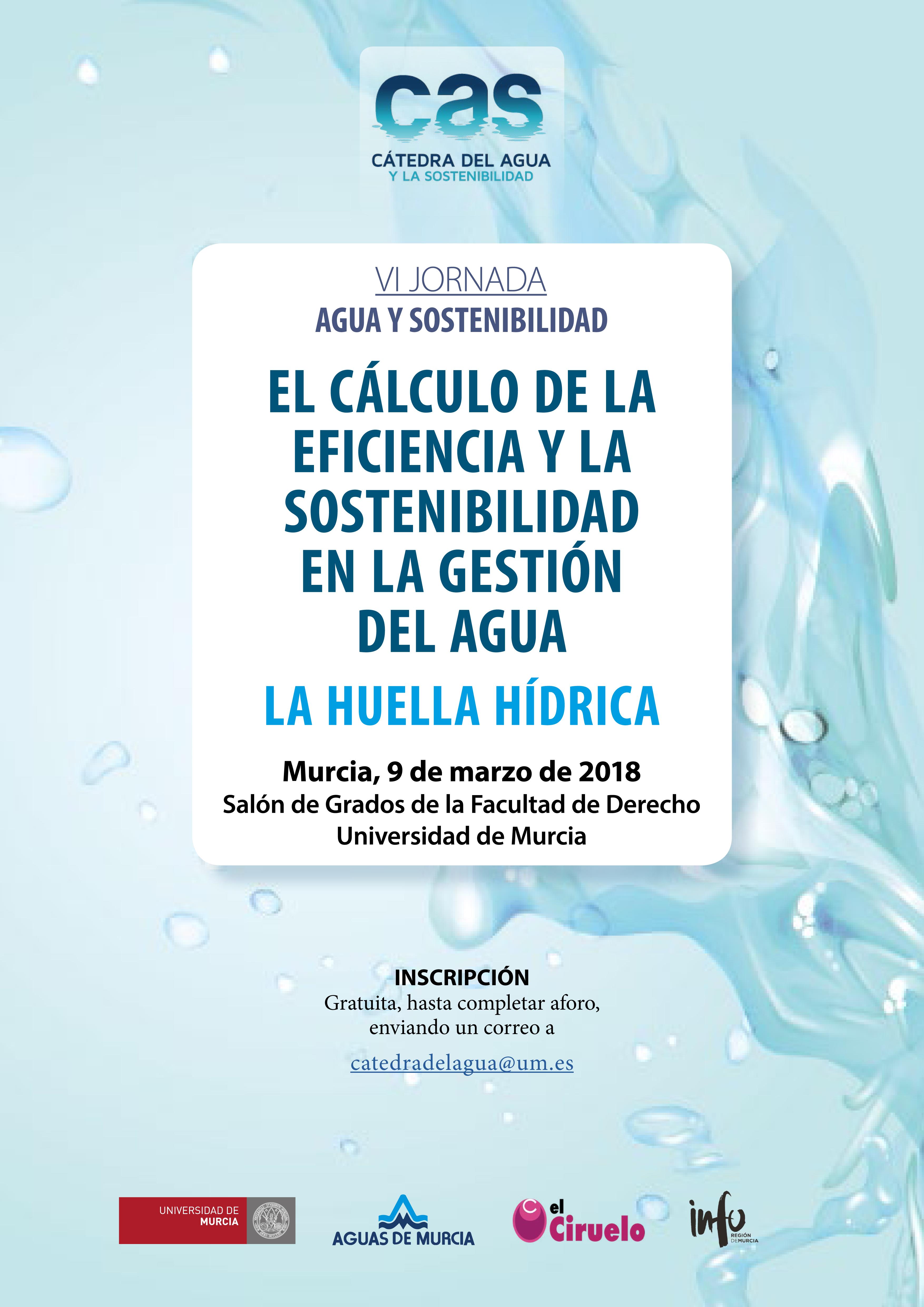 """VI Jornada Agua y Sostenibilidad. """"El cálculo de la eficiencia y la sostenibilidad en la gestión del agua. La huella hídrica"""""""