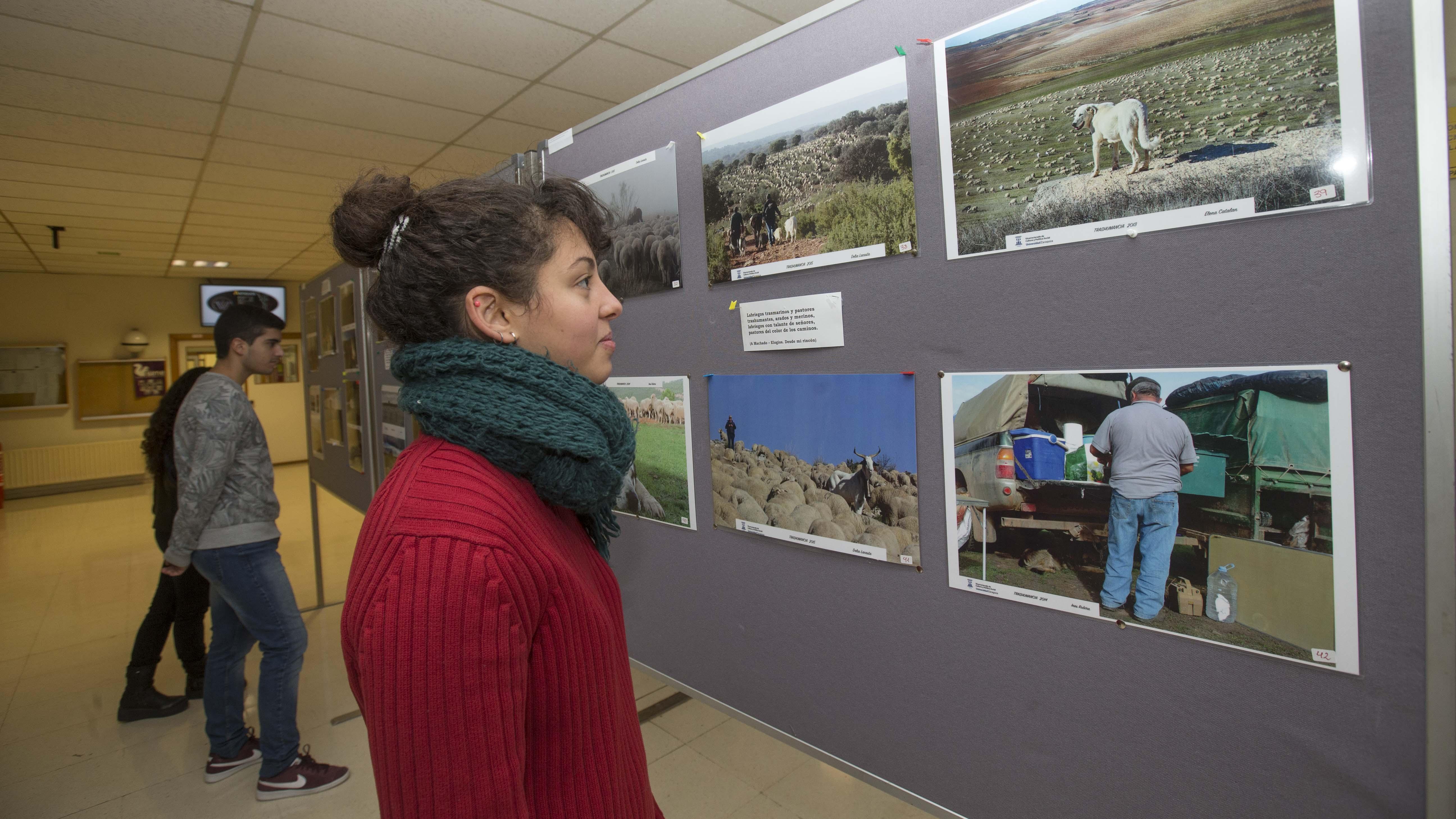 Exposicion alumnos veterinaria