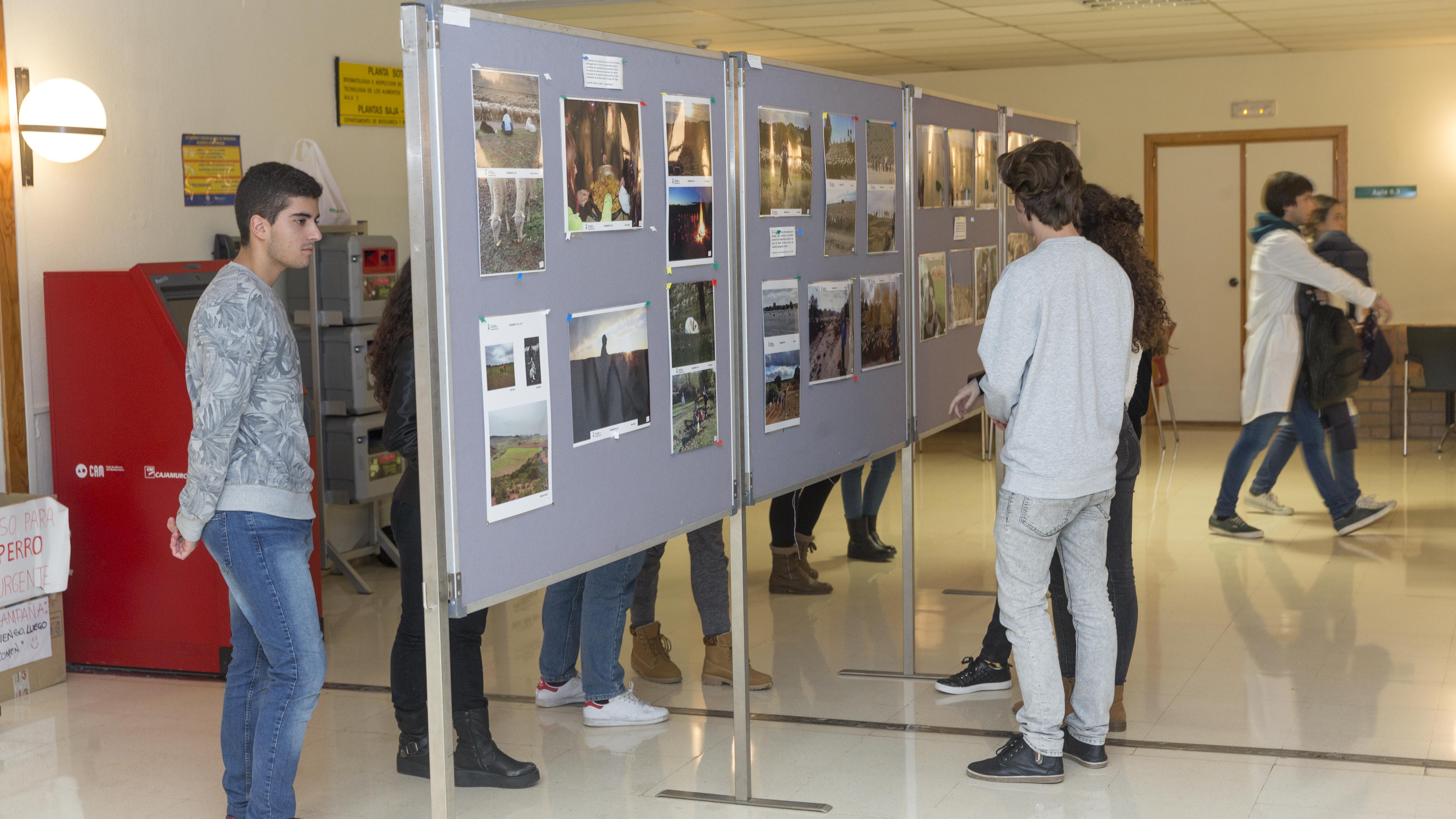 Exposicion en veterinaria2