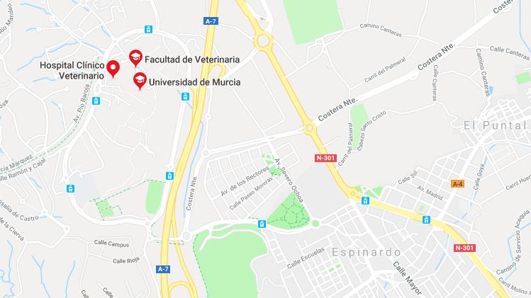 Hospital Veterinario Universidad de Murcia, situado en el Edificio 16 del campus de Espinardo