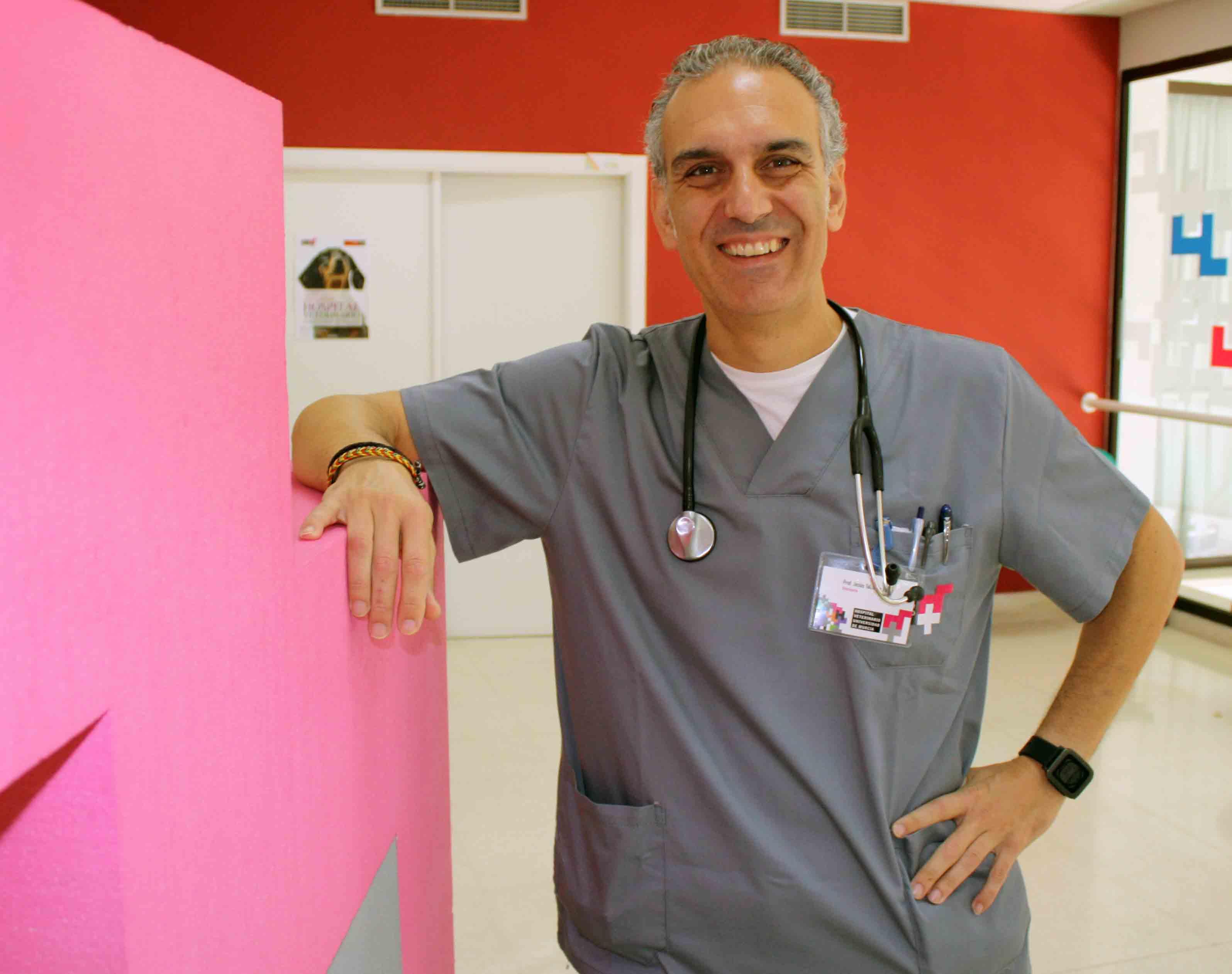 El veterinario Jesús Talavera, del Hospital Veterinario Universidad de Murcia