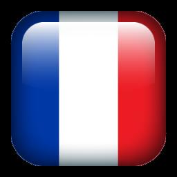 Ver idioma Francés
