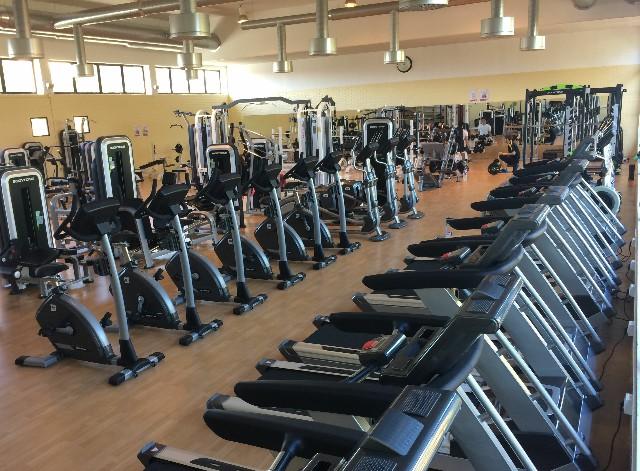 Gimnasio universitario universidad de murcia for Gimnacio o gimnasio