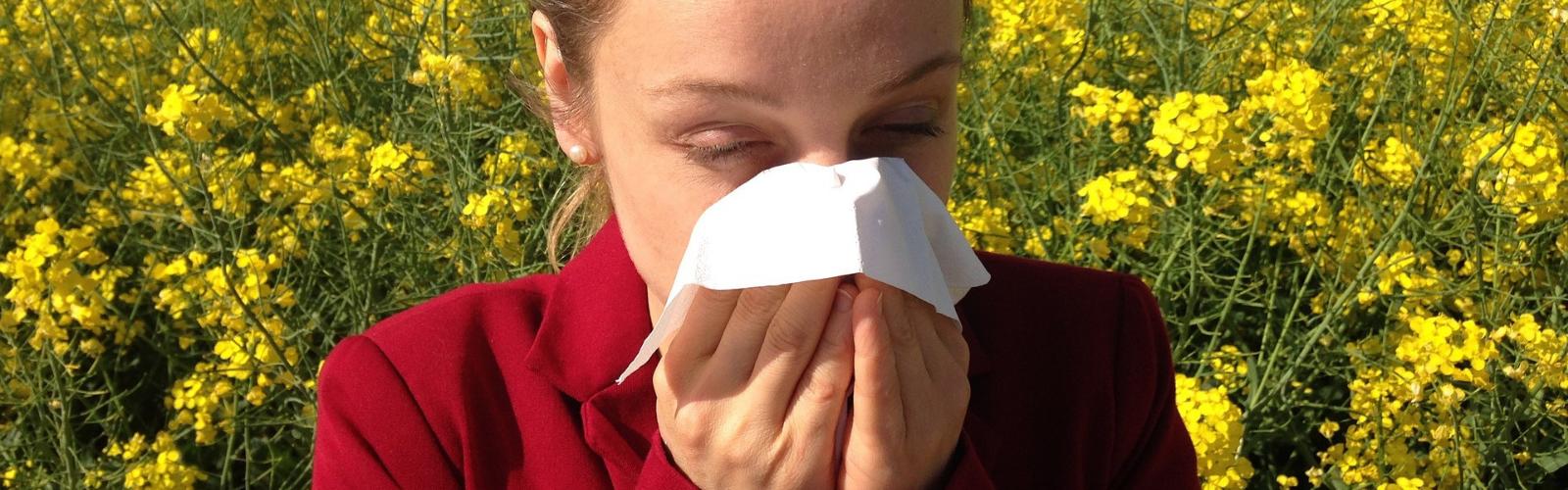 Científicos UMU descubren el mecanismo de los procesos de alergia