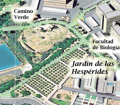 Jardin de las hesperides c tricos del mundo for Jardin de las hesperides valencia