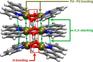 antiglycation studies of pd ii hydrazide complexes And antitumor studies journal of coordination chemistry co(ii), ni(ii) and cu(ii) complexes of benzilic hydrazide pd(ii) complex compounds with n.