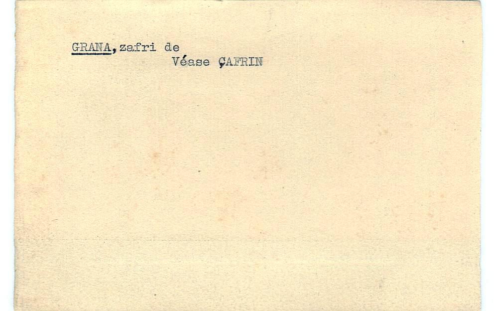 Vista ampliada de la ficha escaneada con el texto para la entrada grana ( 74 de 103 )