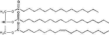 imagenes de los esteroides