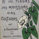 Les fleurs des moissons, des cultures, du bord des routes et des décombres (plantes envahissantes).