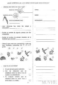 Figura 11.2. Grupo Marmenor (1997) Ciencia'00. ESO 2 (II). San Javier: Novocopy, p.1.